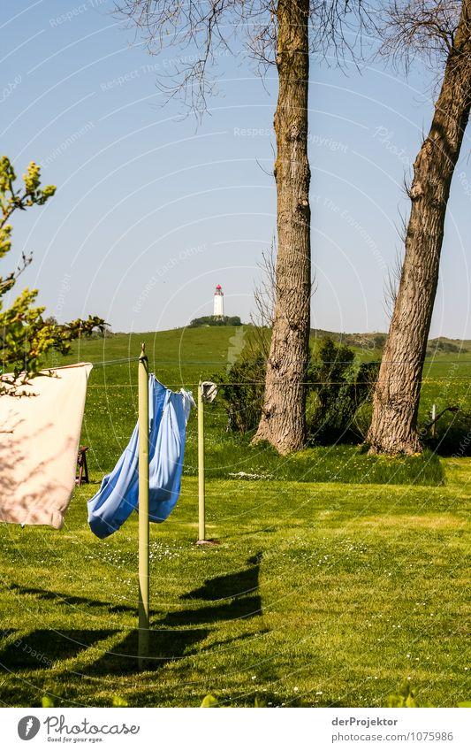 Frische Wäsche am Leuchtturm Natur Ferien & Urlaub & Reisen Pflanze Baum Meer Landschaft Freude Ferne Umwelt Frühling Wiese Gras Küste Freiheit Zufriedenheit