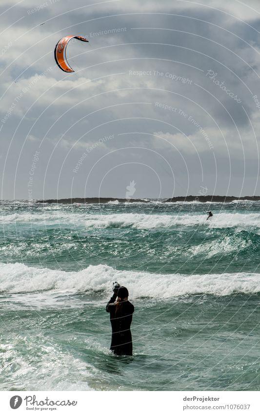 Das ist Einsatz Mensch Natur Jugendliche Pflanze Meer Landschaft Freude 18-30 Jahre Umwelt Erwachsene Küste Frühling Sport Felsen Kraft Wellen
