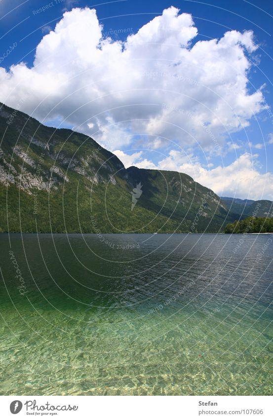 Trügerische Stille Himmel Baum Sommer Wolken kalt Berge u. Gebirge See wandern Sauberkeit Klarheit Alpen Tanne Tourist Slowenien Julische Alpen