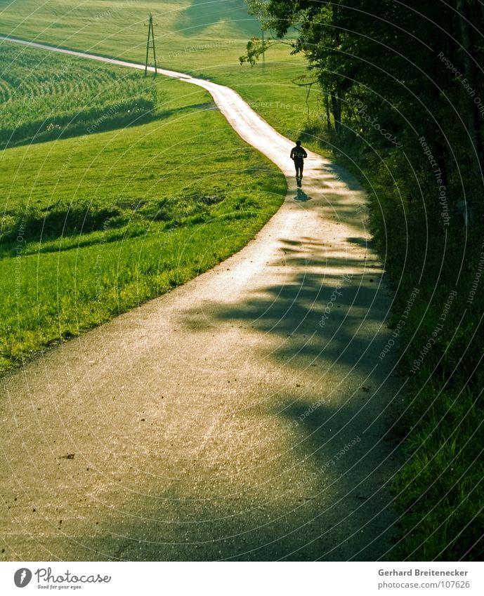 Ölkrise Natur Sonne Einsamkeit Umwelt Landschaft Straße Wiese Sport Herbst Spielen Bewegung Frühling Wege & Pfade Gesundheit Feld laufen