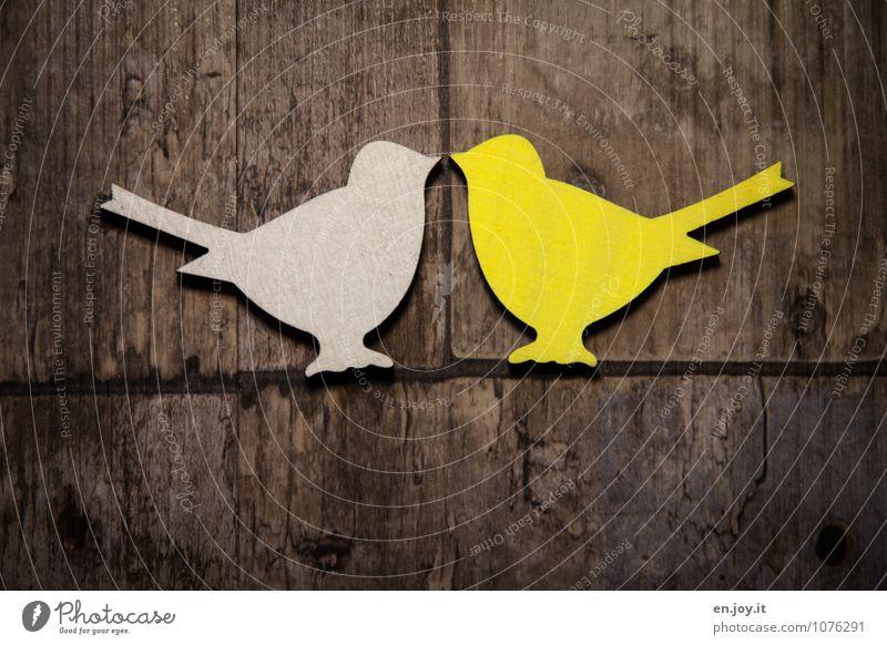 piep piep piep... Feste & Feiern Valentinstag Ostern Hochzeit Geburtstag Vogel 2 Tier Holz Brunft berühren Kommunizieren Küssen Fröhlichkeit Glück Kitsch braun