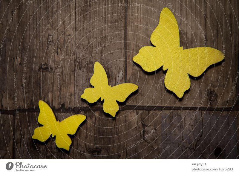 Flugbahn Muttertag Geburtstag Frühling Schmetterling 3 Tier Holz fliegen Freundlichkeit Fröhlichkeit schön braun gelb Freude Glück Lebensfreude Frühlingsgefühle