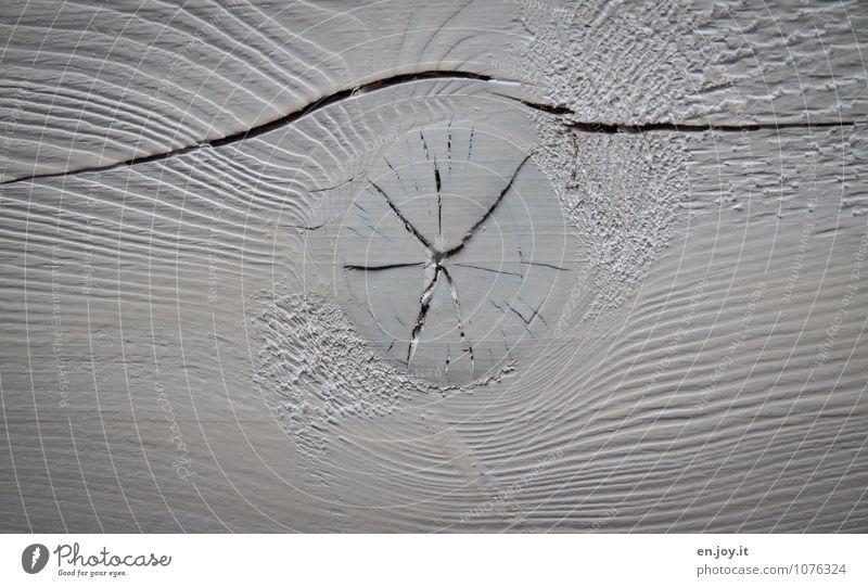 Holzauge Landwirtschaft Forstwirtschaft hell rund weiß Verfall Holzbrett Maserung Anstrich lackiert Riss Spalte kaputt Dachgebälk Farbfoto Gedeckte Farben