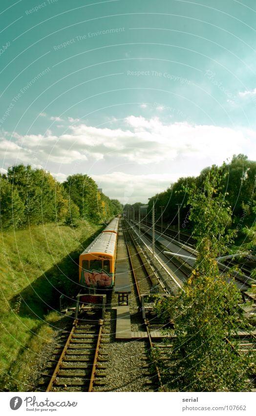 Auf dem Abstellgleis S-Bahn U-Bahn Gleise Hügel Kies Baum Sträucher Sommer Wolken Gras Verkehr Öffentlicher Dienst verfallen Eisenbahn Flucht Perspektive parken
