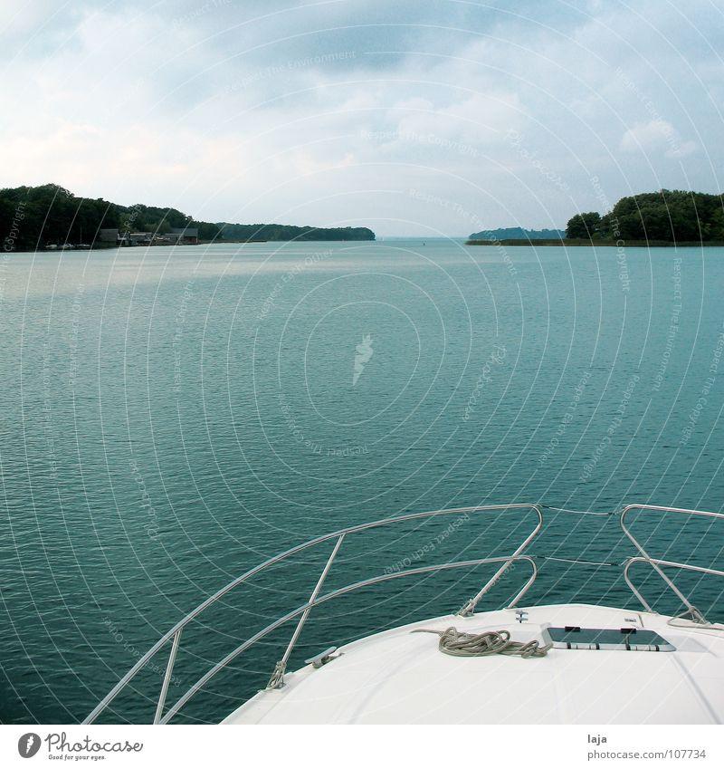 Volle Fahrt voraus Himmel Baum Ferien & Urlaub & Reisen Sommer Wolken Erholung Freiheit See Wasserfahrzeug Freizeit & Hobby Unendlichkeit Wassersport Schiffsbug