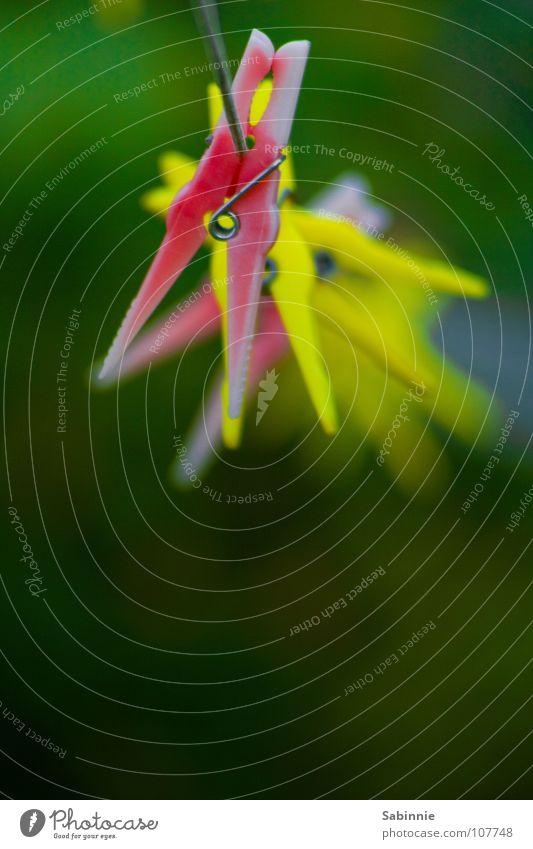 (Nutzloses) Rumhängen Garten Wäsche Wäscheklammern Seil Kunststoff gelb grün rot Klammer Wäscheleine Haushalt Farbfoto mehrfarbig Außenaufnahme Detailaufnahme