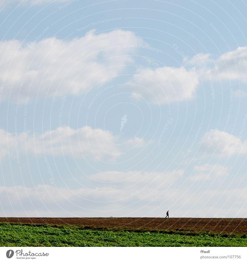 walk the line Mensch Natur Himmel ruhig Wolken Einsamkeit Ferne Feld wandern laufen Horizont Spaziergang