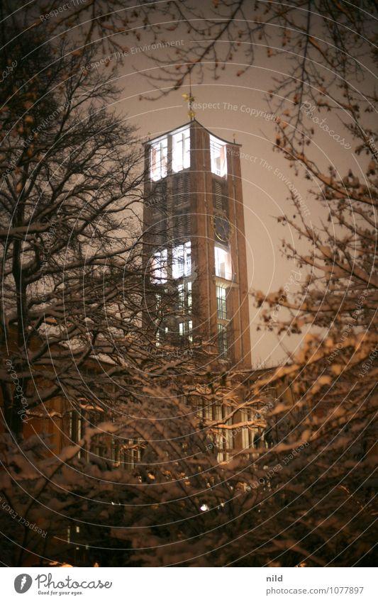 nachts unterwegs Landschaft Pflanze Himmel Nachthimmel Winter Wetter Schnee Schneefall Baum Sträucher Park München Kirche Turm Bauwerk Architektur