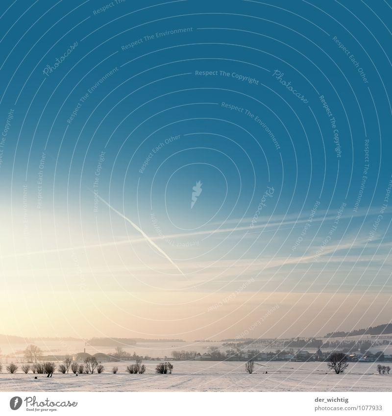 Wintermorgen Himmel Natur Baum Erholung Landschaft kalt Berge u. Gebirge Umwelt Schnee Eis Schneefall Sträucher ästhetisch laufen Schönes Wetter