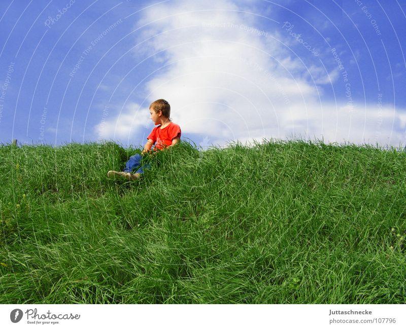 Der beste Überblick Kind Himmel blau grün rot Wolken Gras Junge Freiheit oben Glück sitzen Zufriedenheit Erfolg Pause T-Shirt