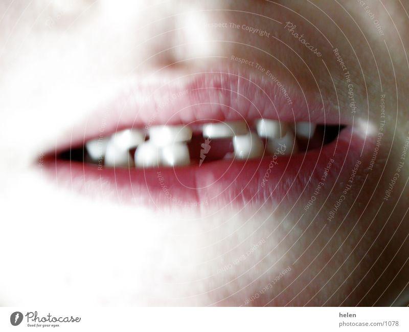 milchzahn_01 Mensch Mund Zähne Milchzähne