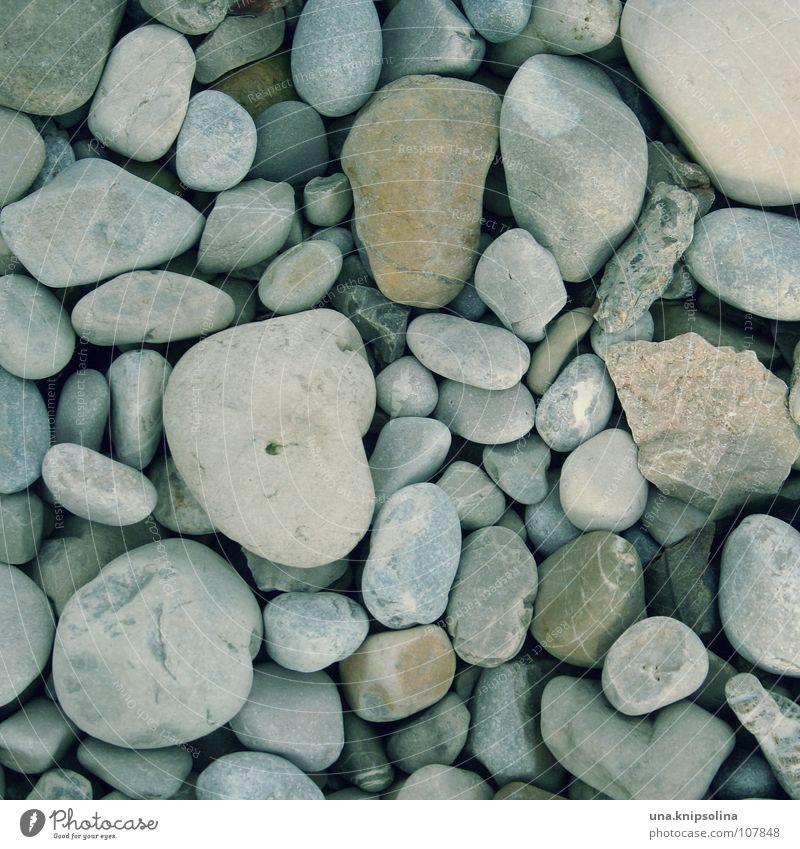 kiesel Innenarchitektur Baustelle Erde Sand Park Flussufer Wege & Pfade Stein bauen gehen laufen Kieselsteine Geröll Bauschutt Bodenbelag verlegen Barfuß