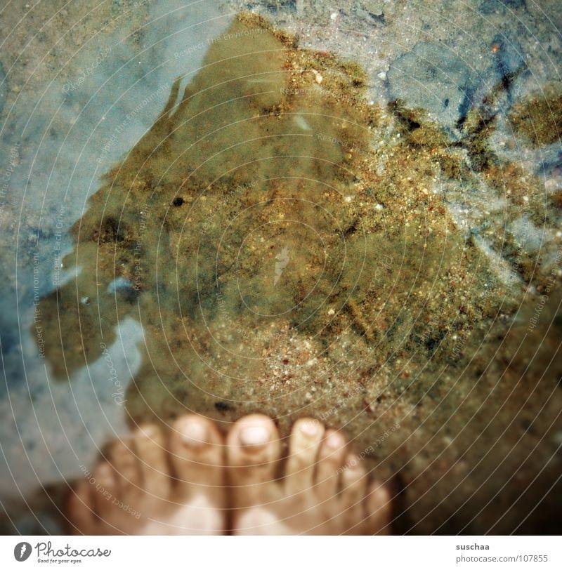 zu naß .. ? See Zehen dreckig stehen Schlamm Blatt Reflexion & Spiegelung kalt nass Herbst seewasser Wasser Fuß Sand Stein Schwimmen & Baden Barfuß
