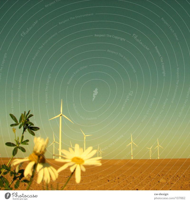 die vergänglichkeit Windkraftanlage Propeller regenerativ ökologisch umweltfreundlich Technik & Technologie Umweltverschmutzung Industrielandschaft