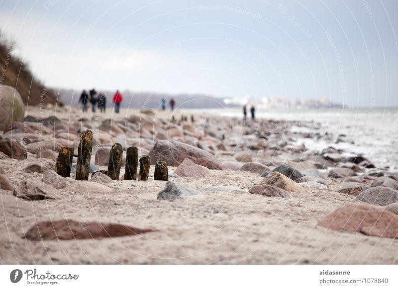 Ostseestrand Einsamkeit Landschaft ruhig Winter Küste Sand Deutschland wandern Schönes Wetter Ostsee Gelassenheit Fernweh Langeweile Vorsicht Mecklenburg-Vorpommern Ausdauer