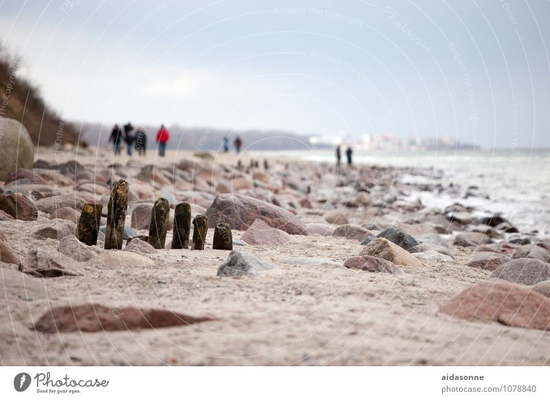 Ostseestrand Landschaft Sand Winter Schönes Wetter Küste wandern achtsam Vorsicht Gelassenheit ruhig Ausdauer Langeweile Fernweh Einsamkeit bequem Heiligendamm