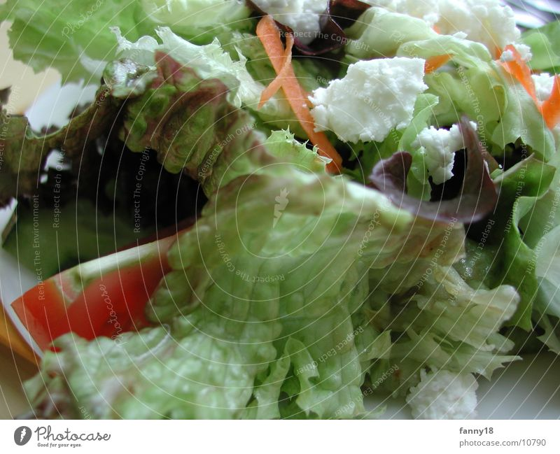 Salat mit Käse grün Gesundheit mischen Vegetarische Ernährung Gemüse