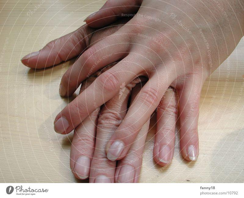Hände I Frau Hand feminin Arme