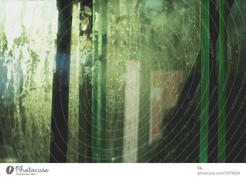 es ist grün Fenster außergewöhnlich ästhetisch Wassertropfen nass Kreativität Fensterscheibe Inspiration komplex