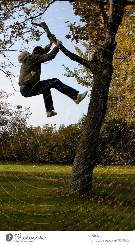 .Kletterbaum Mensch Himmel Mann Jugendliche blau alt grün Baum Freude Blatt gelb Wiese Leben Herbst Bewegung Holz