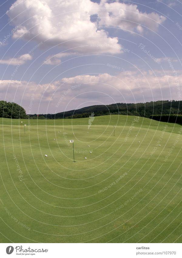 Das Runde muss in das Runde grün Sport Ball Rasen Freizeit & Hobby Wut Golf Loch Ärger Frustration Behinderte üben Golfplatz Haarschnitt Golfball