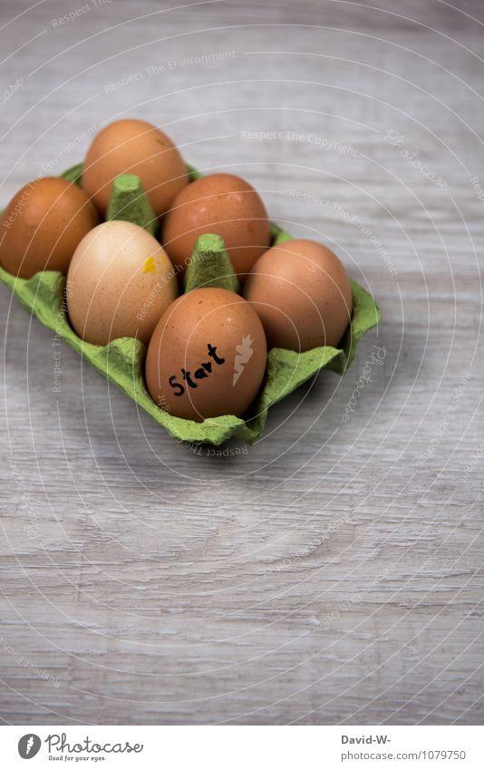 steigender Konsum zur Ostersaison Mensch Gesunde Ernährung natürlich Zeit Gesundheitswesen Lebensmittel Ernährung Beginn rund Ostern streichen Gastronomie lecker Bioprodukte Frühstück Sammlung