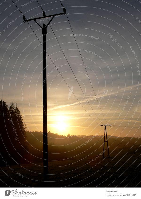 Über Land Elektrizität Strommast Leitung 3 Sonnenlicht Morgen Sonnenaufgang Wiese Waldrand Nebel Nebelbank Licht Infrastruktur Verbindung Elektrisches Gerät