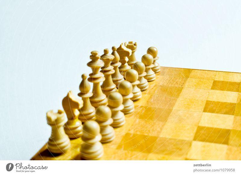 Schach Anordnung Beginn Duell Gegner kämpfen Schachbrett Schachfigur Spielen Zweikampf Landwirt Turm springer Läufer König Dame weiß Textfreiraum