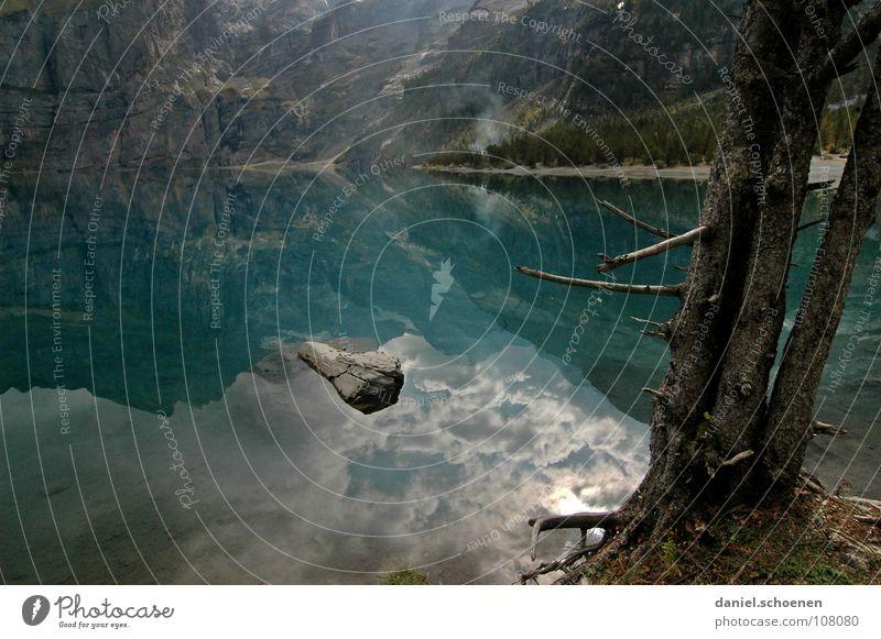 still ruht der See Reflexion & Spiegelung Baum Schweiz zyan wandern Tanne grün Einsamkeit ruhig Wolken Oberfläche Wasser Berge u. Gebirge blau Natur Alpen
