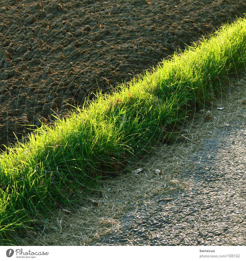 % grün Gras grau Wege & Pfade braun Feld Erde Streifen Asphalt Teilung Fußweg diagonal Ackerbau Hälfte Grundbesitz fruchtbar