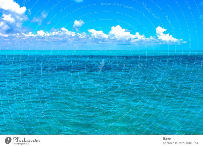 Himmel Natur Ferien & Urlaub & Reisen Pflanze blau schön grün weiß Meer Erholung Wolken Umwelt Gefühle Küste Lifestyle braun