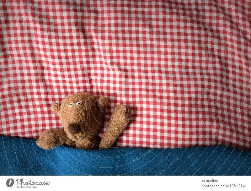 Bär im Bett Freude Gesundheit Gesundheitswesen Krankenpflege Wohlgefühl Erholung ruhig Wohnung Kinderzimmer Schlafzimmer Tier Liebe liegen träumen niedlich
