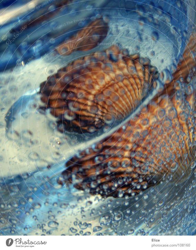 Urlaubsstimmung Natur blau schön Ferien & Urlaub & Reisen Meer Sommer Strand Erholung Umwelt Sand Stimmung Wellen Glas frisch Wassertropfen