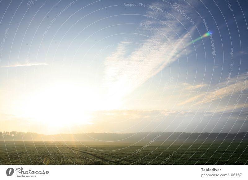 ____O______________________ Feld Nebel Morgen Dämmerung Sonnenaufgang Licht flach Gegenlicht Horizont aufwachen schön Himmel Amerika Niveau Niedersachsen