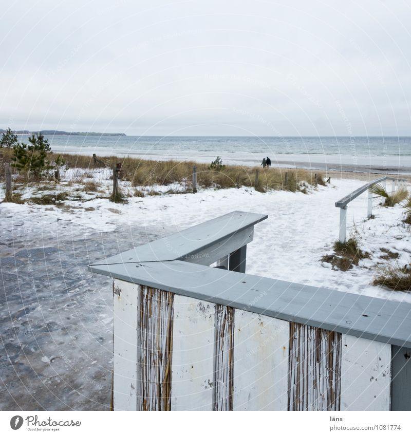Gedanken können ziehen Himmel Erholung Strand kalt Schnee Frost Ostsee