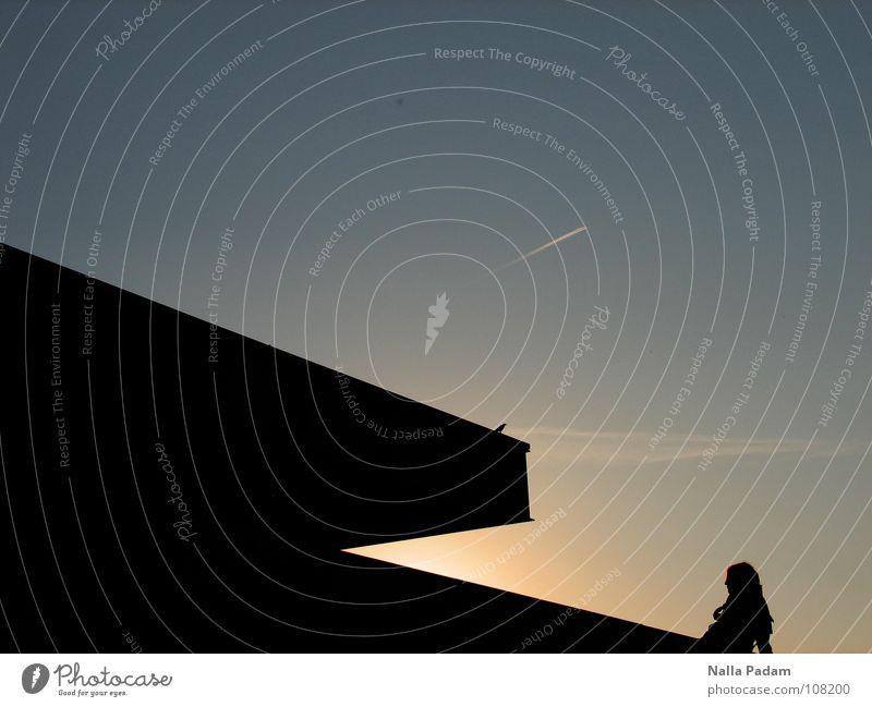 Der Tag geht Vogel Sonnenuntergang schwarz Einsamkeit Gegenlicht historisch Neue Nationalgalerie Silhouette blau drin die Schönsten Franzosen