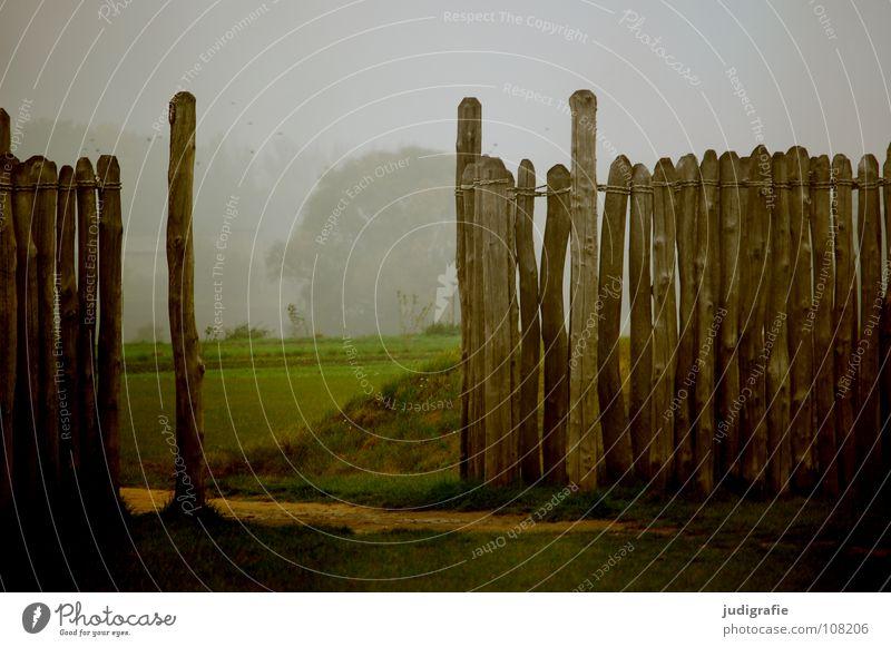 Sonnenwende Holz Mauer Zaun Pause Nebel Bauwerk Observatorium Wintersonnenwende Jahreszeiten Wiese Wissenschaften historisch Farbe Baumstamm Pfosten Natur