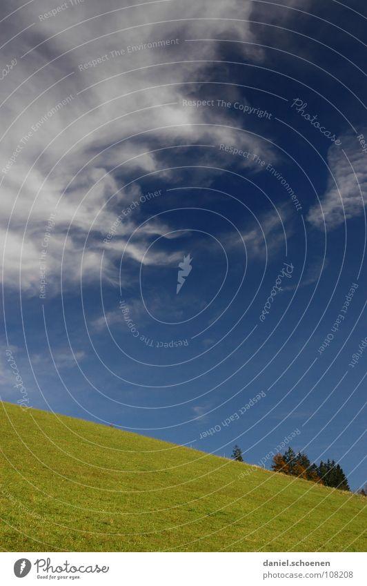 es geht bergab mit dem Altweibersommer schön Himmel weiß Baum grün blau Wolken Herbst Wiese Gras Berge u. Gebirge wandern Wetter Horizont Schwarzwald Cirrus