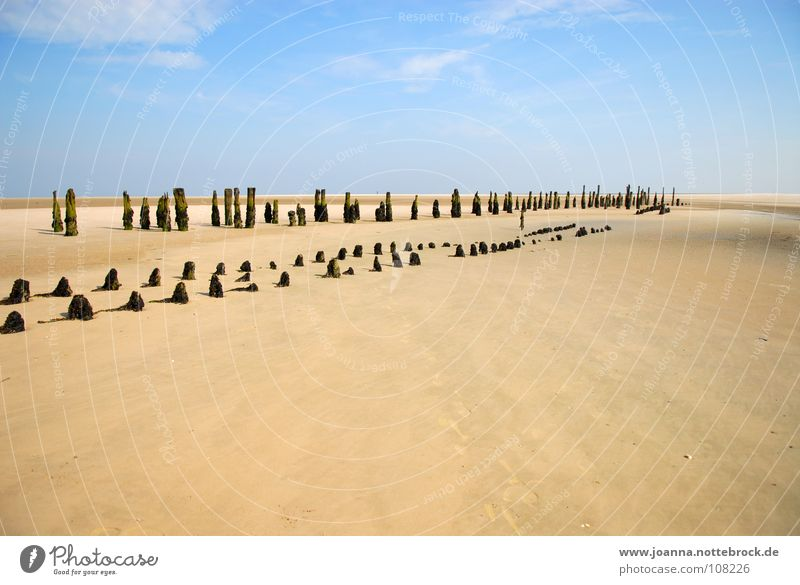 Am Strand Ferien & Urlaub & Reisen Erholung Ferne ruhig Sträucher Denken Ausflug Wangerooge Trauer beschaulich In sich gekehrt Suche finden Erreichen Sehnsucht