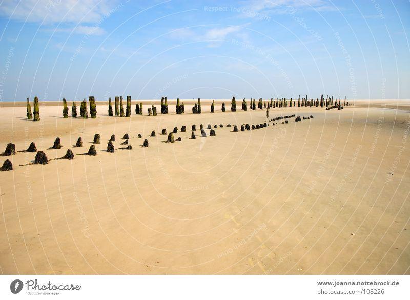 Am Strand Himmel Natur Ferien & Urlaub & Reisen Farbe ruhig Ferne Erholung Tod Landschaft Leben Freiheit Sand Küste Traurigkeit Denken