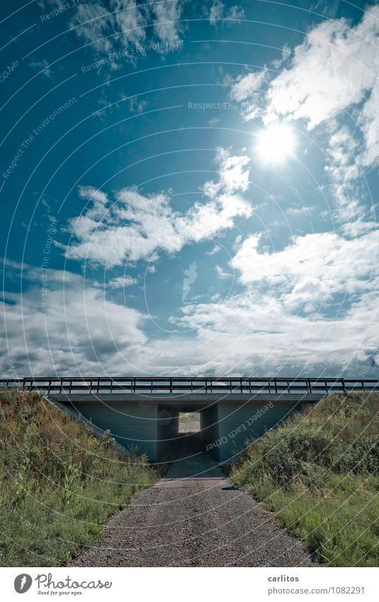 Die Brücke war schief Himmel Ferien & Urlaub & Reisen Sonne Wolken Ferne Verkehr Schönes Wetter Brücke Güterverkehr & Logistik Geländer Ziel Brückengeländer Autobahn Personenverkehr Unterführung Böschung