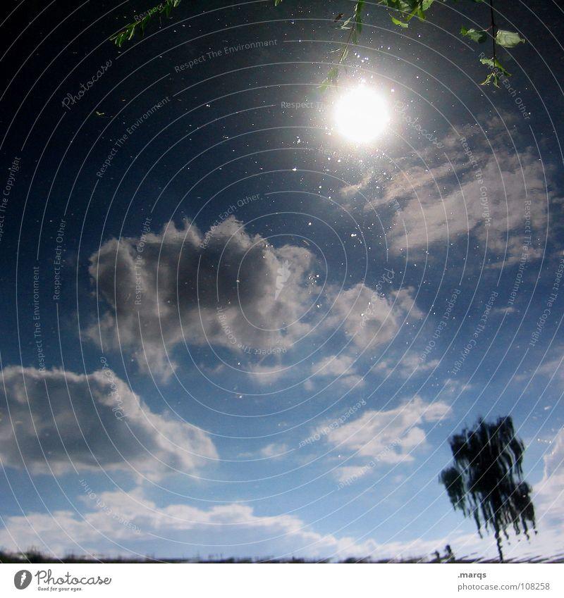 Sunshine Reflexion & Spiegelung Gewässer See Teich nass träumen Baum Wolken Geäst Horizont Deich Sommer glänzend ruhig Einsamkeit Farbverlauf