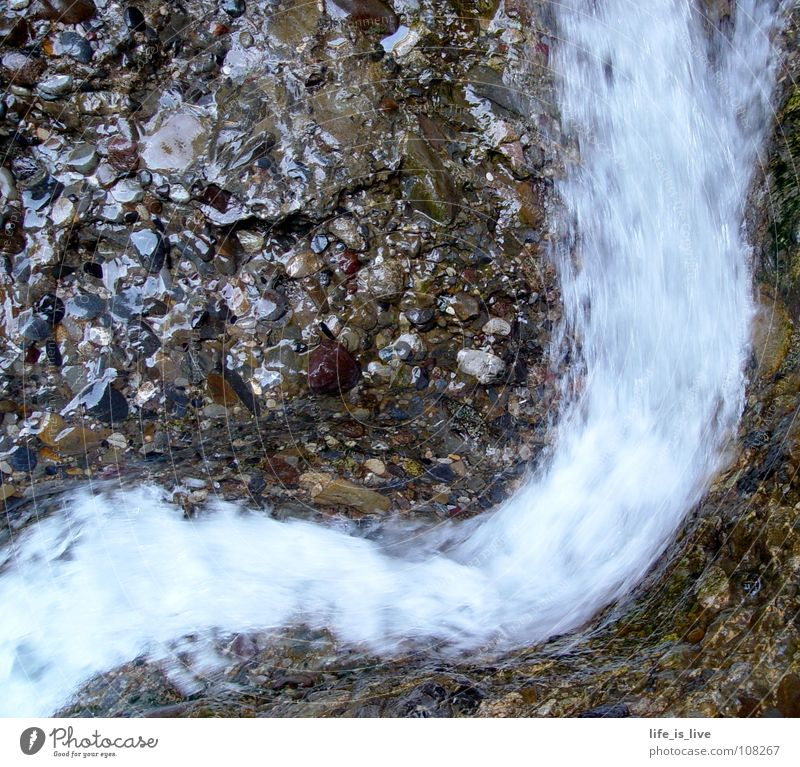_kein_Leben_ohne_ Wasser_ Rauschen fließen Bach nass weich zart berühren Kostbarkeit Flut Fluss Kraft Stein anna water Durst Schwitzer Bächle in den Bergen
