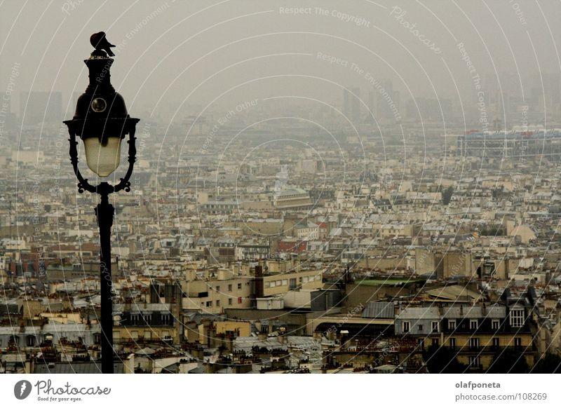 Paris am Morgen Stadt ruhig Ferne Lampe dunkel grau Traurigkeit Vogel Nebel groß hoch Trauer Niveau Aussicht Laterne