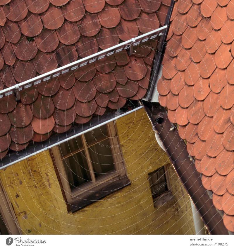 dachdraufsicht Dach Dachdecker gelb Haus Bauernhof Backstein Holz Dachfirst Dachfenster Muster Fenster Dachziegel Handwerk historisch Detailaufnahme alt
