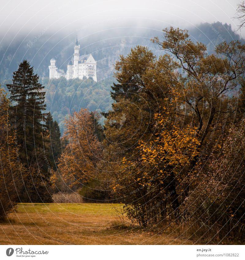 Es war einmal... Natur Ferien & Urlaub & Reisen Pflanze grün Baum Landschaft Wald gelb Berge u. Gebirge Herbst Wiese Gras Nebel Tourismus Sträucher Ausflug