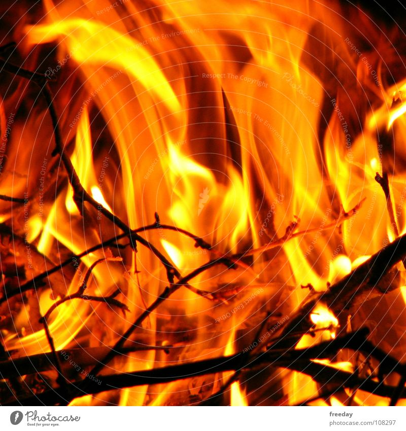 ::: Es brennt ein Feuer in mir ::: Sommer rot Wärme Holz Hintergrundbild hell orange Luft Kraft Ast Brand Rauch heiß Physik Umweltschutz
