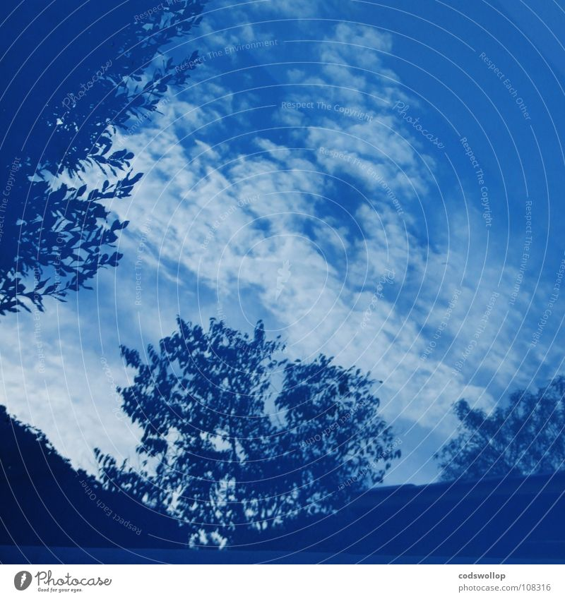 blaupastenverfahren kobaltblau Licht Himmel Reflexion & Spiegelung Wolken Baum Wasser blue cobalt ultramarine preußischblau prussian bleu light clouds