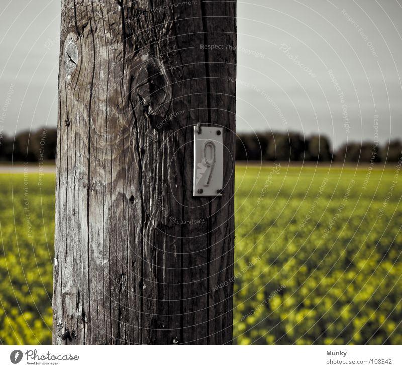 N3UN Himmel grün Baum Landschaft gelb Holz grau Elektrizität rund Ziffern & Zahlen Säule Riss Strommast Tradition Wegweiser Pfosten