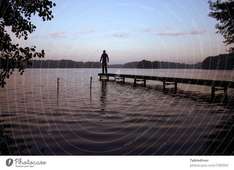 Der neue Tablediver I See Teich Wellen Morgen Nebel Steg Mann Wald ruhig Meditation Frieden Wasser Morgendämmerung Silhouette